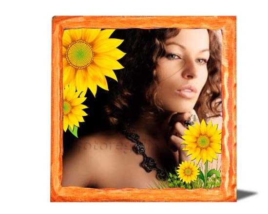 arancio foto su legno